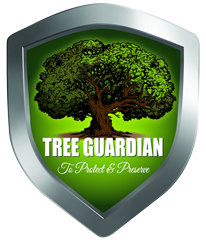 Tree Trimming and Removal Tree Preservation Lafayette LA